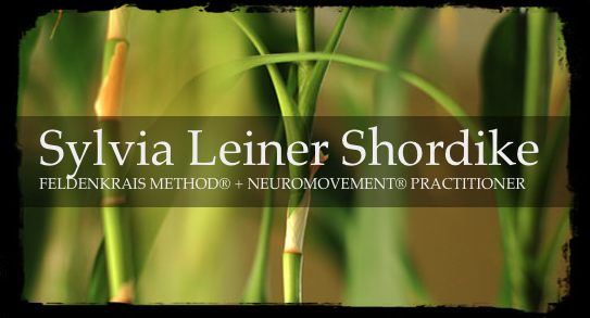Sylvia Shordike, expert Feldenkrais®+NeuroMovement® Practitioner for Special Needs Children since 1994